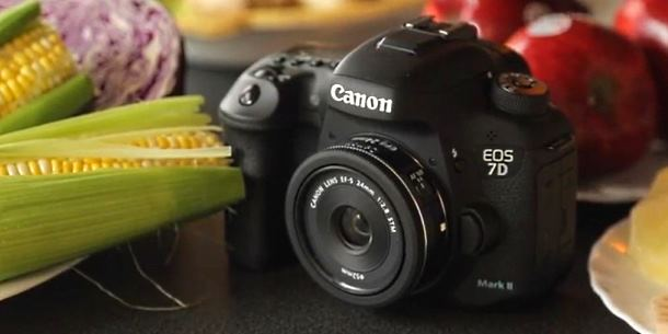 Canon EF-S 24mm f 2.8 STM video review