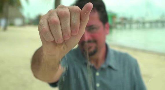 Dust on camera Sensor