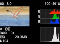 How to get the right exposure histogram
