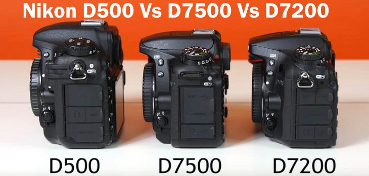 Nikon D7500 Vs D500 Vs D7200 Review Video Test