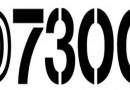 Nikon D7300 Specs