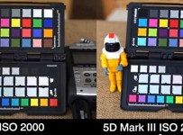 Sony A7s vs Canon 5D Mark III vs Sony A7R