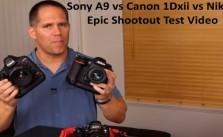Sony A9 vs Canon 1Dxii vs Nikon D5 test video